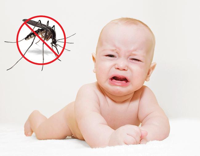 Cửa lưới ngăn muỗi bảo vệ sức khỏe bé yêu